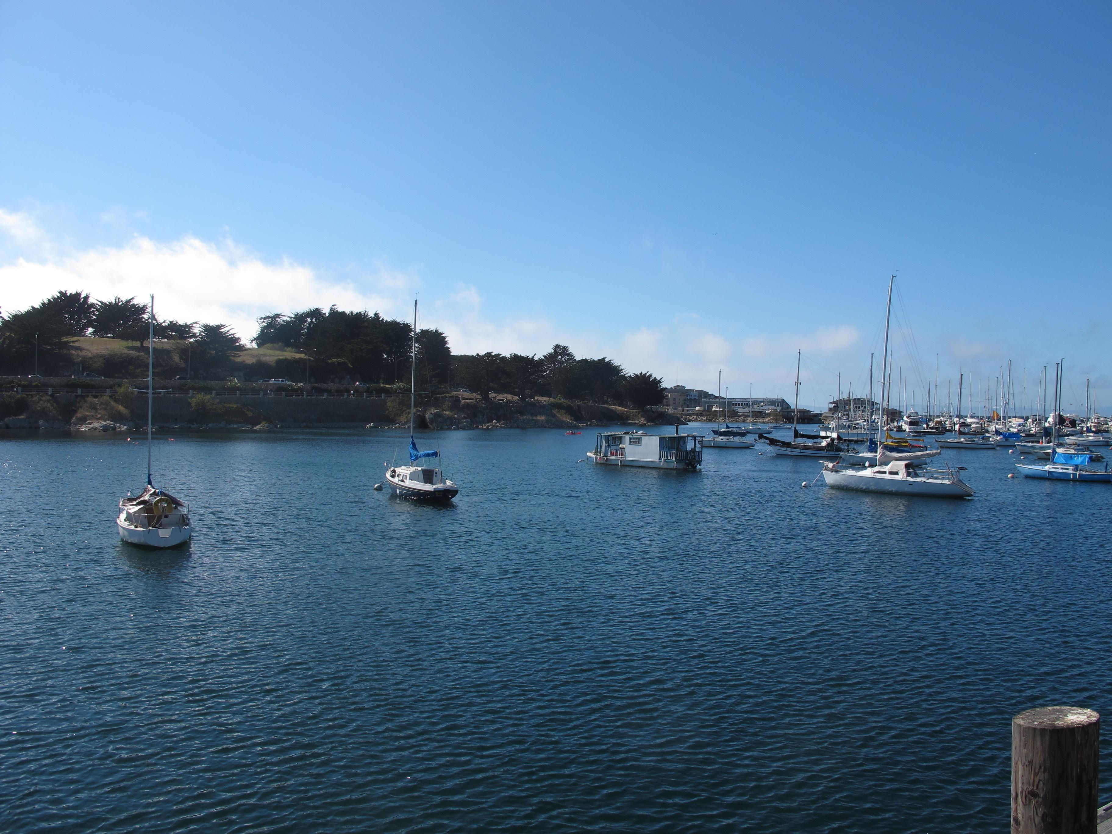 The Seawall at Monterey